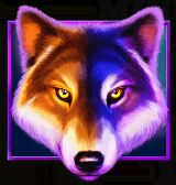 Wolf Gold Symboli