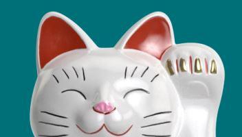 lucky days teemassa japanilainen kissa
