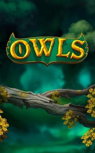 owls slotti on erinomainen peliuutuus