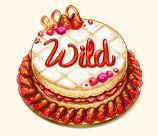 wild baker's treat slotissa