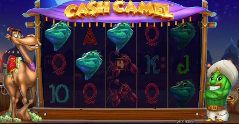 Cash Camel ilmaiskierrokset